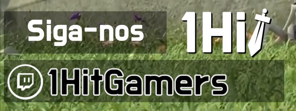 Siga nosso canal na Twitch!